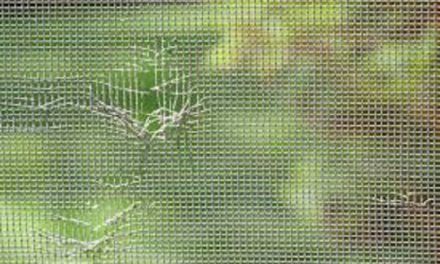 Repair or Replace Damaged Window Screen
