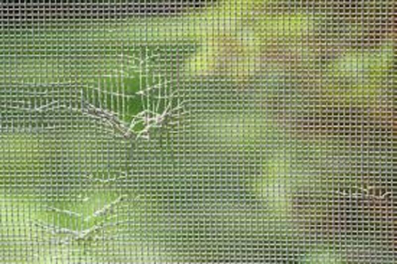 Repair or Replace Damaged Window Screen